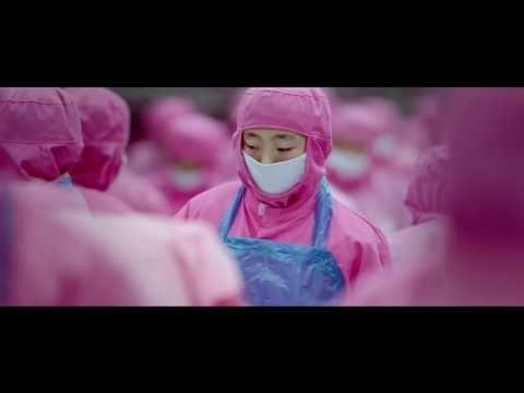 El negocio de alimentar a la Humanidad Samsara - YouTube