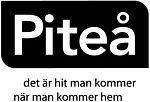 Föreläsning och workshop på Kunskapsfestivalen 2014, i Piteå: Lust att skapa, lust att berätta.