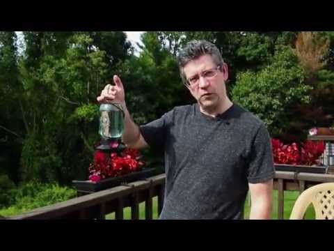 Making Hummingbird Nectar - YouTube