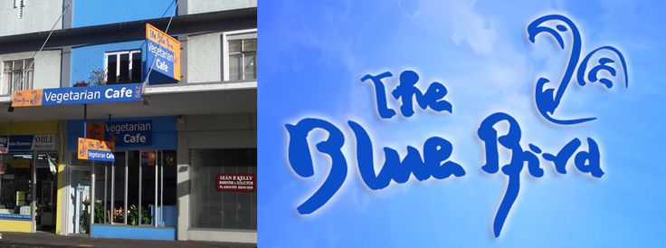 Welcome to The Blue Bird vegetarian café – vegetarian and vegan cuisine in Auckland, New Zealand