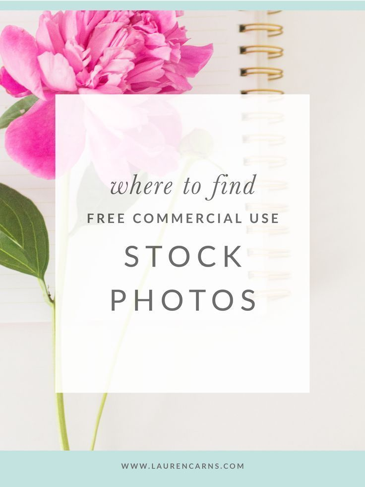 Where to find free commercial use stock photos - Lauren Carns | tips for bloggers, tips for small business owners, tips for creative entrepreneurs, resources for small business owners, girl boss tips, small biz tips, resources for small biz bosses, free stock photos, resources for bloggers, free resources for business owners