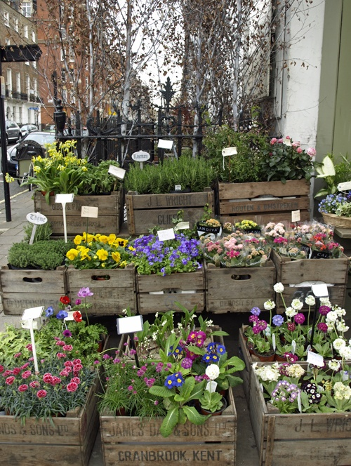 31 best flower shack images on pinterest flowers garden plants of spring and summer flower arranging tips 1 styling and photography ingrid mightylinksfo