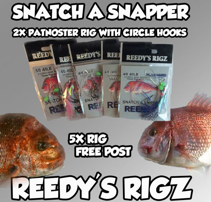 Snapper rigs and surf rigs by Reedy's Rigz  were design to Simplify fishing around Australia. we have designed some rigs for each part of Australia From Melbourne's port Phillip bay  Victoria  up to Queensland in Brisbane's Moreton bay  and Adelaide Metro snapper in  south Australia  and w.a Shark bay over in the west and The sydney harbour and offshore  Area . We sponsor a few charters around oz and they test our rigs , Head over to snapper tackle on Facebook and see the results for your…