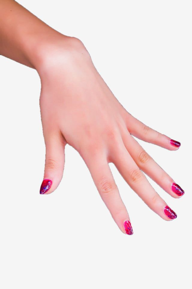 Hand Left Hand Nails Red Nails Gesture Back Slim Png Transparent Clipart Image And Psd File For Free Download Red Nails Hand Clipart Red Nail Polish