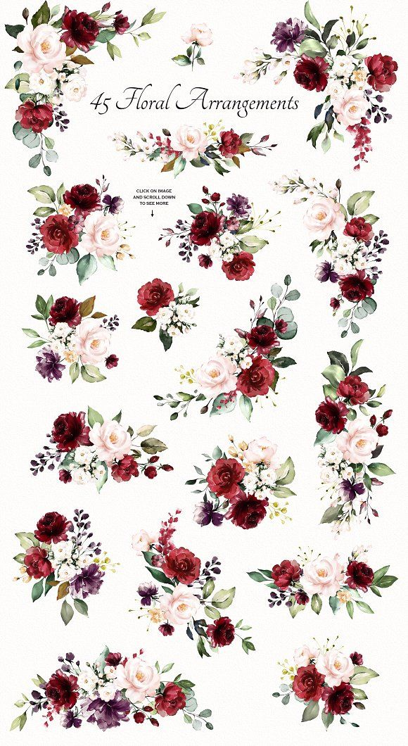 watercolor flowers rose illustration Graphics
