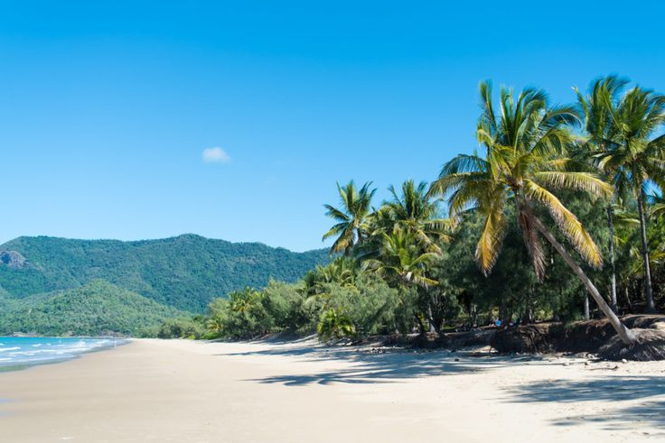 This Proves that Far North Queensland is the ULTIMATE Holiday Destination :http://departmentofwandering.com/this-proves-that-far-north-queensland-is-the-ultimate-holiday-destination/