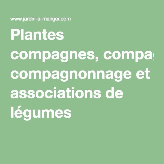 1000 id es propos de compagnonnage sur pinterest potager petit potager et jardinage potager - Association de legumes au potager ...