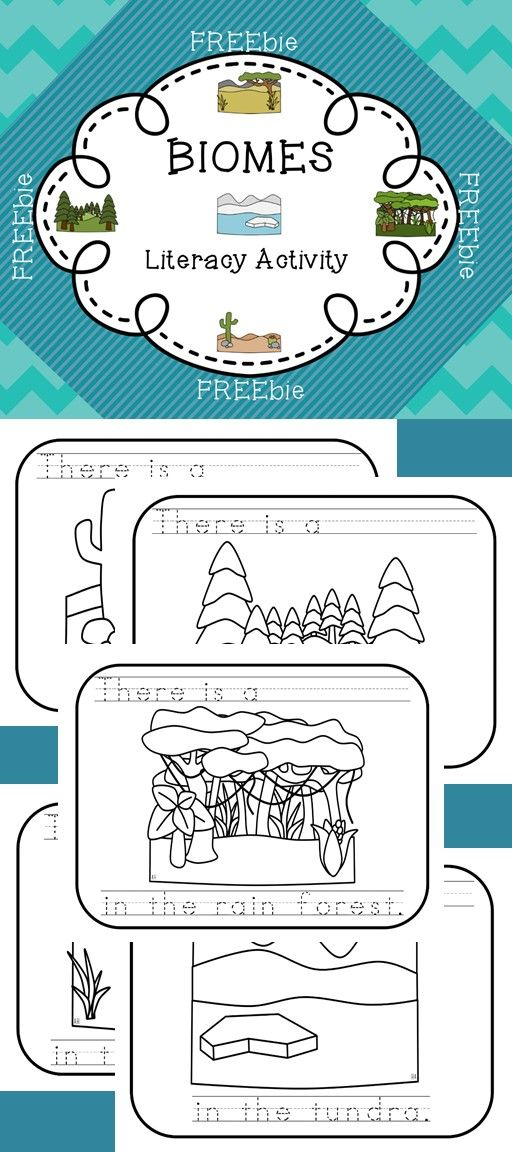 This FREEbie allows your early readers/writers to show what they know about the animals that live in each of the following BIOMES: Rainforest, Tundra, Desert, Grassland and Forest.