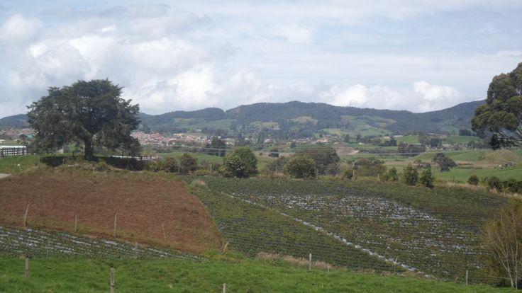 hermoso terreno de 33 cuadras en venta ubicado en la union antioquia precio; $3500,000,000 www.inmueblesoriente.com