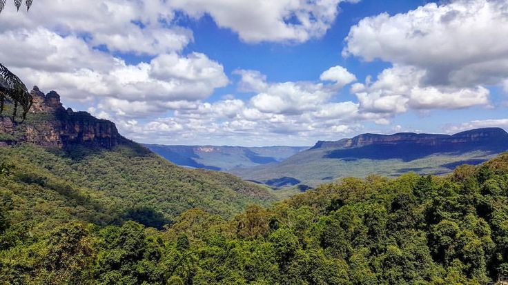 The Blue Mountains being very green