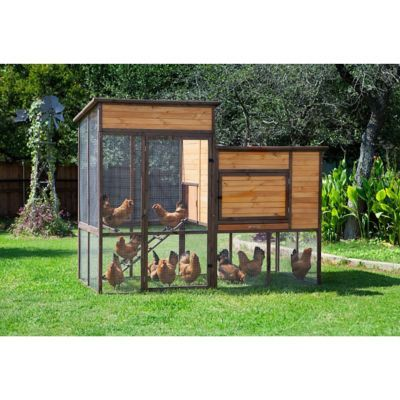 Precision pet products walk in prairie house chicken coop for Chicken coop size for 6 chickens