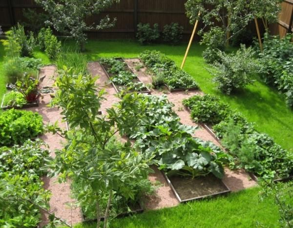Best 25+ Backyard Vegetable Gardens Ideas On Pinterest | Veggie Gardens,  Raised Gardens And Building Raised Beds