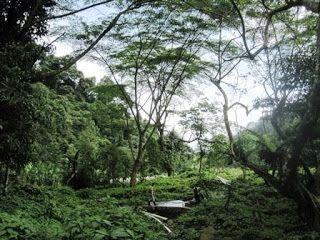Menyusuri Sungai Cisadane
