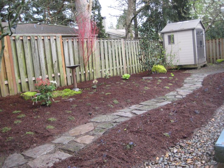Cheap backyard ideas dog friendly our transformed dog - Cheap no grass backyard ideas ...