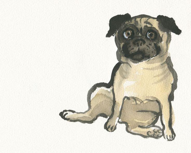 Funny Pug. Watercolour.  #pug https://www.facebook.com/judywatsonart