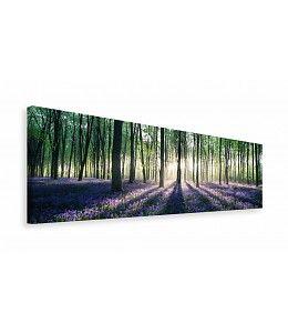 Schilderij Bos met zonnestralen. Perfect voor in je slaapkamer!
