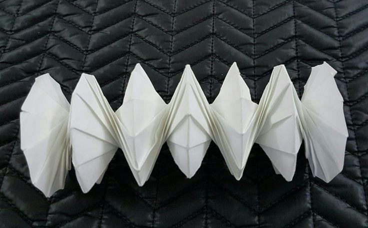 Origami su decagono - 2N