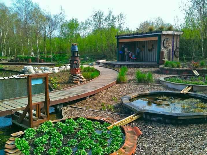 10 best Rain garden in London wetland by Nigel Dunnett ...