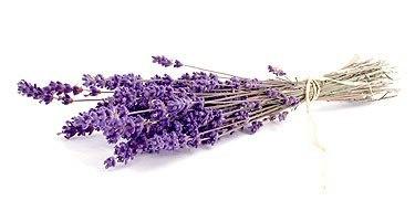 50 DIY Lavender Bath and Body Recipes