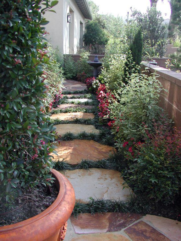 Stepping Stone Walkway With Herbs