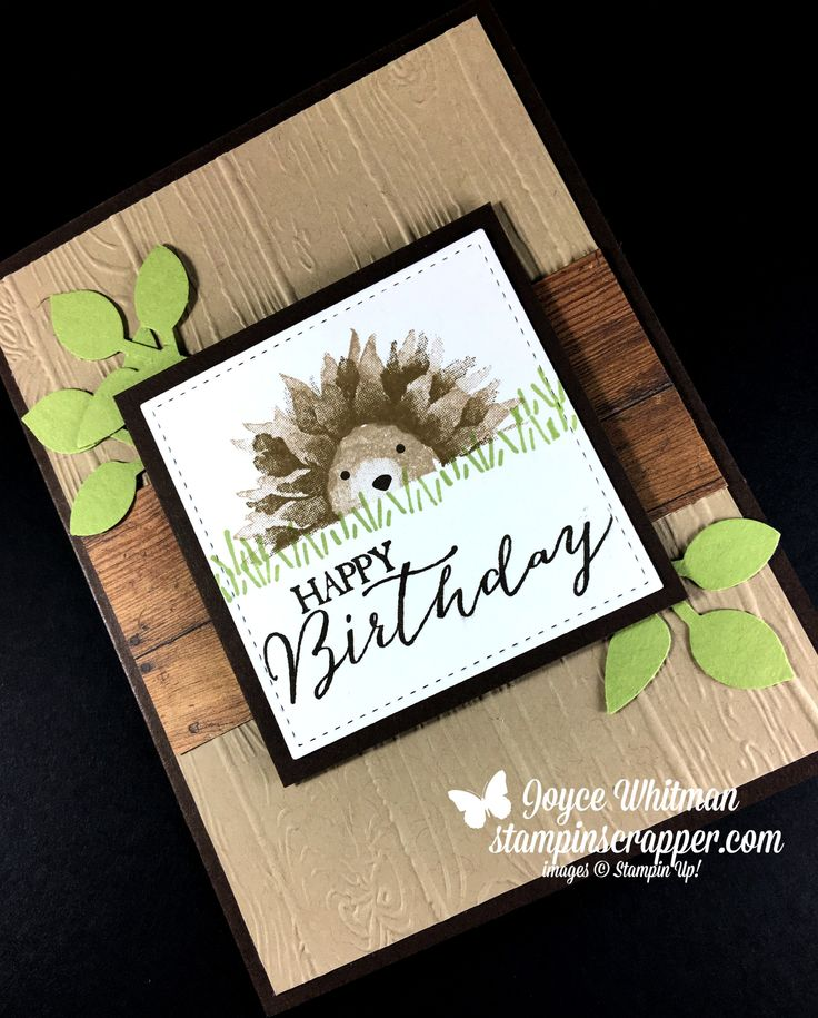 Need a birthday card for a child, a man or a woman?  This card would work for all of them.  I used the Painted Harvest stamp set to make this adorable hedgehog.  I also used the stamp sets of A Little Wild, Butterfly Basics and Foxy Friends.