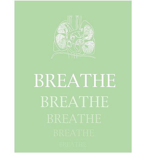 breathe breathe breathe breathe!: Cystic Fibrosis, Breath Breath, Just Breath, Anatomy Art, Quotes, Graphics Prints, Poker Chips, Free Printable Art, Mottos