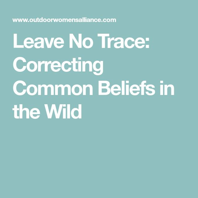 Best 25+ Leave no trace ideas on Pinterest No trace, Cub scouts - bsa health form