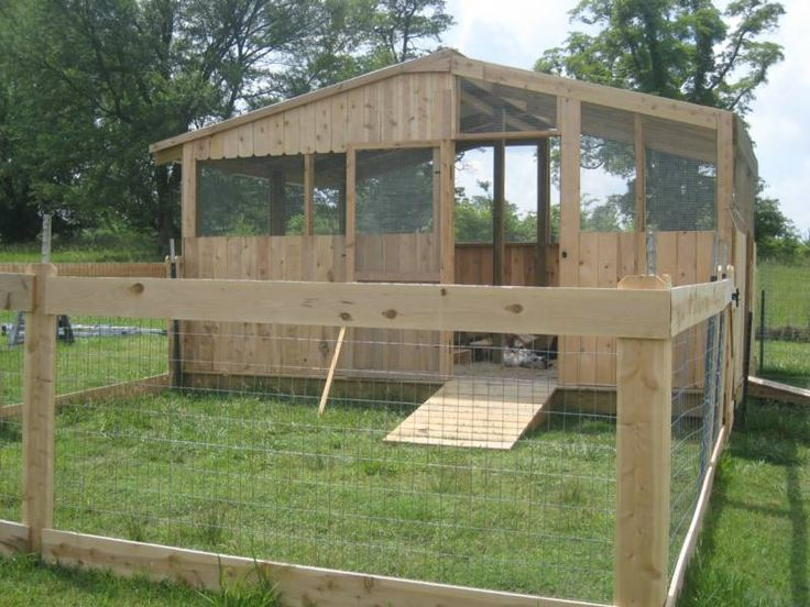 Duck coop duck breeds are segregated into their own for Duck hutch ideas