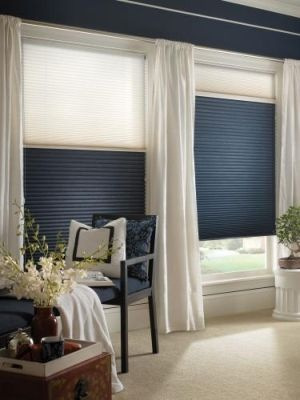 These blinds move up and down.  During the day you can have the light come through, at night you can do the blackout.  I must have these.