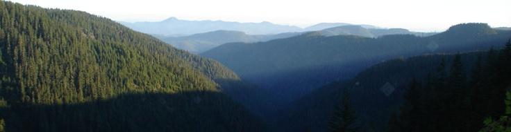 Oregon Bigfoot pictures, bigfoot sounds, bigfoot photos, bigfoot video, bigfoot sightings