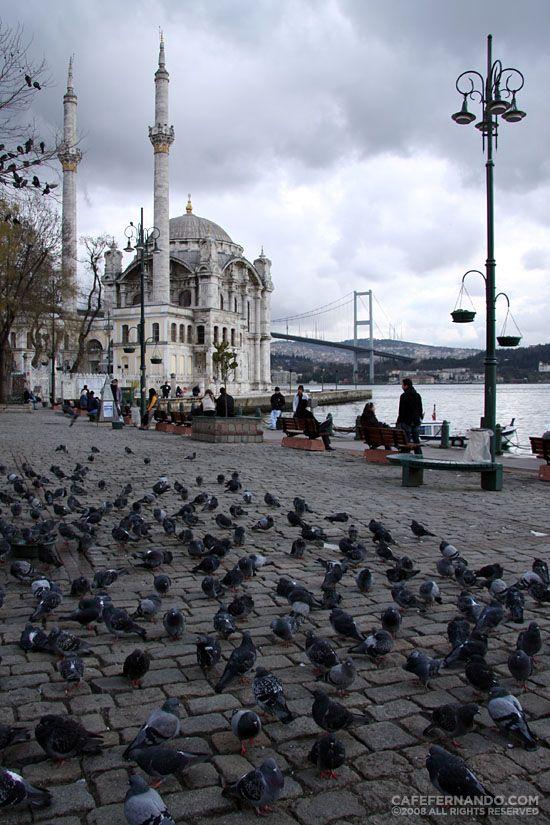 Winter in Istanbul, Cafe Fernando