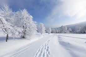Investigadores de nieve:  Recolectan y analizan cristales de hielo en la nieve para estudiar los efectos de la contaminación en una zona nevada.
