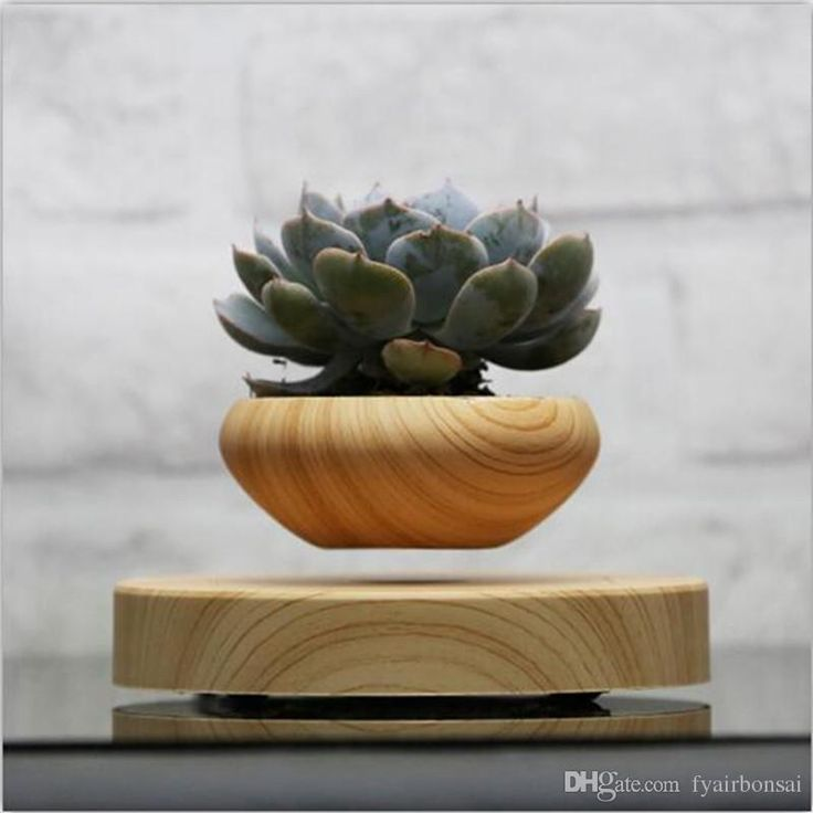 2016 2016 Japanese Magnetic Levitation Plastic Floating Bonsai Ceramic Flower Pot Bonsai Pots Wooden Color Xmas Gifts For Men No Plant A 015 From Fyairbonsai, $80.41 | Dhgate.Com