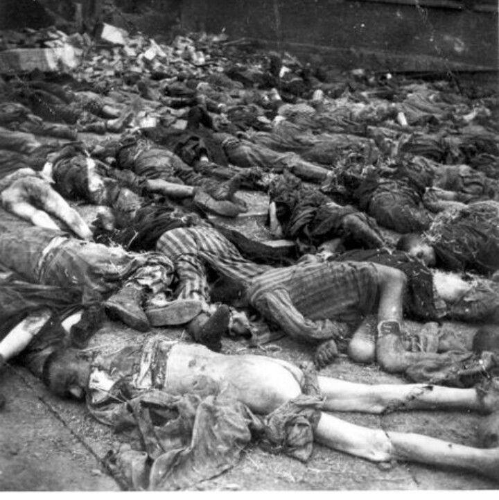 Neuengamme after liberation