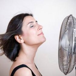 Natural Food Remedies For Hot Flashes - How To Reduce Hot Flashes With Diet | Search Home Remedy