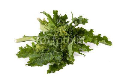 Fresh Rapini stock photo