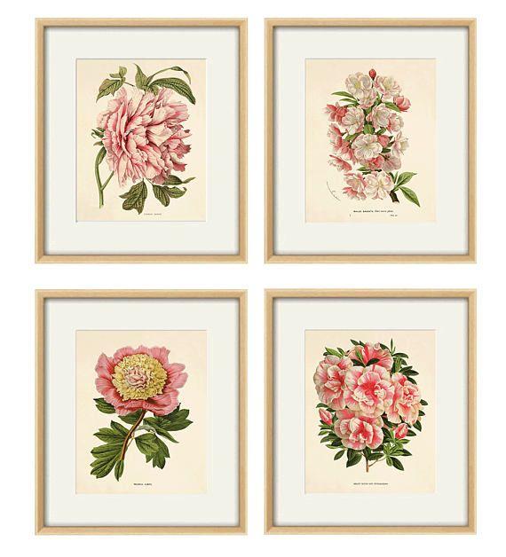 Pink Botanical Prints Set Of 4 Vintage Flower Art Print Etsy Flower Prints Art Flower Wall Art Botanical Print Set