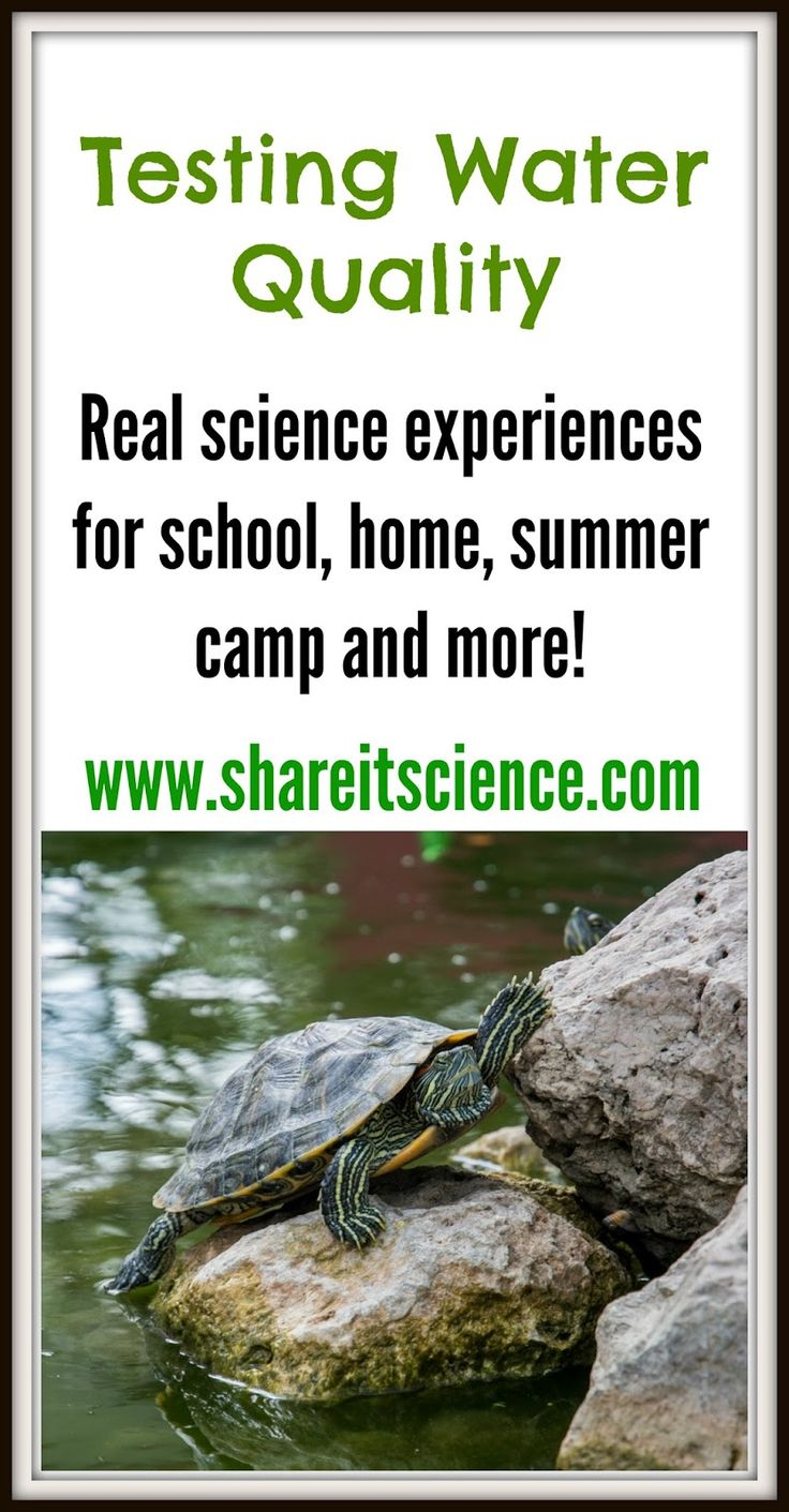 Share it! Science News : Science Teacher's Toolbox: Testing Water Quality