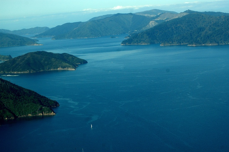 Queen Charlotte Sound out of Picton