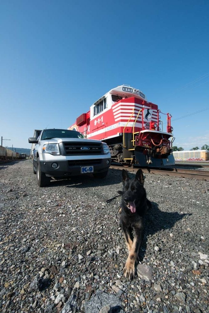 Norfolk Southern Police Department K-9 Britt poses with the       9-1-1 First Responders locomotive at the Enola Diesel Shop near Harrisburg, Pennsylvania. We didn't have a puppy photo of Britt to share but we did want to take this opportunity on National Puppy Day to salute all the puppies that grow up to be K9 officers. You work is appreciated. www.nscorp.com