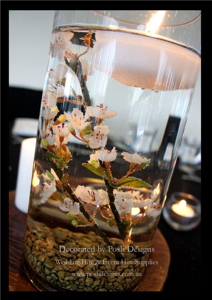 #cylindervasetablecentres #wedding #theming available at #poshdesignsweddings - #sydneyweddings #southcoastweddings #wollongongweddings #canberraweddings #southernhighlandsweddings #campbelltownweddings #penrithweddings #bathurstweddings #illawarraweddings  All stock owned by Posh Designs Wedding & Event Supplies – lisa@poshdesigns.com.au or visit www.poshdesigns.com.au or www.facebook.com/.poshdesigns.com.au #Wedding #reception #decorations #Outdoor #ceremony decorations