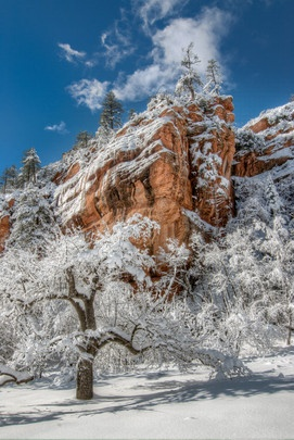 Winter Wonderland | 2012-2013 Arizona Highways Online Photography Contest Submitted by: Eric Groeger (Oak Creek Canyon)
