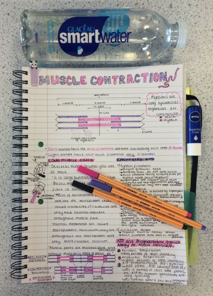 I wish my notes looked like this: maybe then I would actually study!
