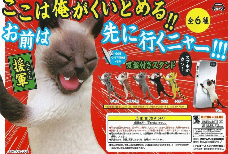 Amazon.co.jp | here I'll halt! You are go ahead meow! Sucker with stand <reinforcements> all six | Toy Shop