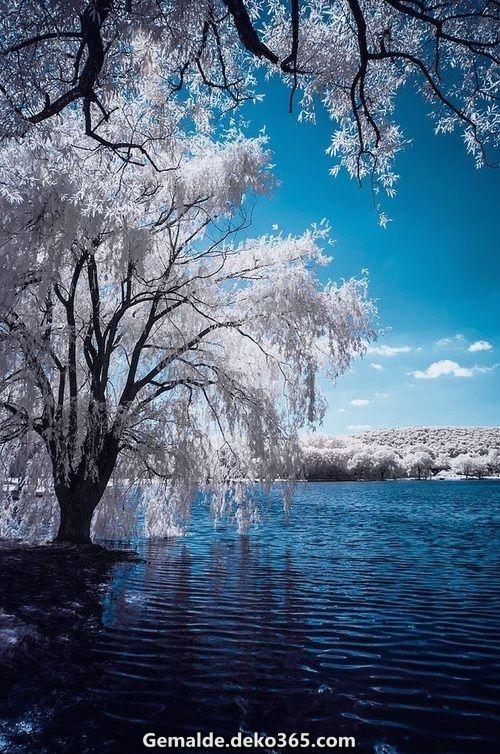 Tolle Eldridge Teich ~ Elmira, NY | Die Gesamtheit blau