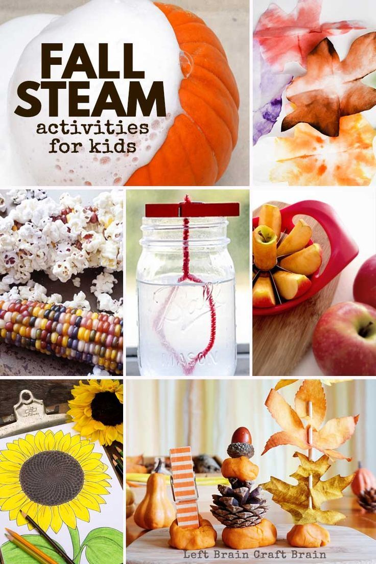 1086 best stem for kids science images on pinterest science