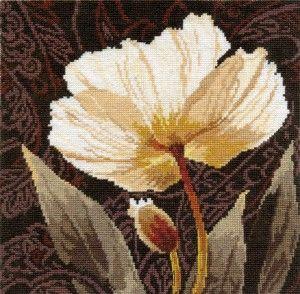 Алиса 2-17 «Белые цветы. Залитый светом»