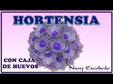 HORTENSIA CON CAJA DE HUEVOS - YouTube