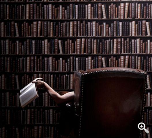 Les 33 meilleures images propos de papier peint sur - Papier peint imitation bibliotheque ...