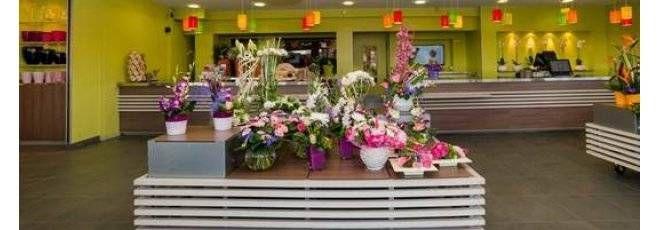 Franchise Carrément Fleurs - Fleurs - Ouvrir un magasin de fleurs